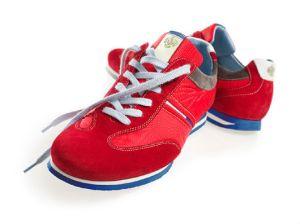 sneakers Floris van Bommel