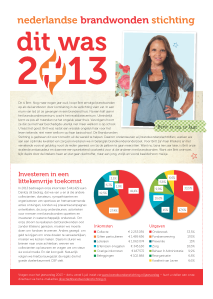 jaaroverzicht 2013 Brandwonden Stichting_inkomsten & uitgaven