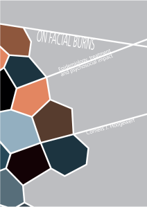 Het proefschrift 'On Facial Burns, epidemiology, treatment and psychosocial impact'.